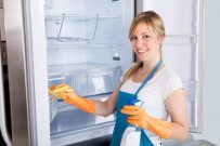 Maid Cleaning Services Florida